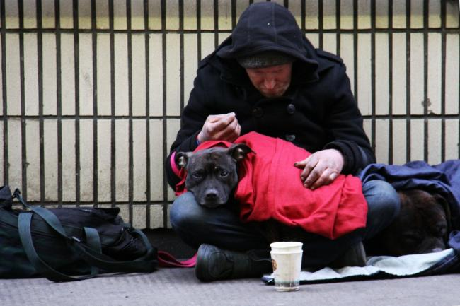 Overall, rough sleeping this summer was 28% higher than last year.