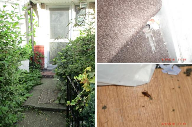 Rats and cockroaches were found at a home in Barnet