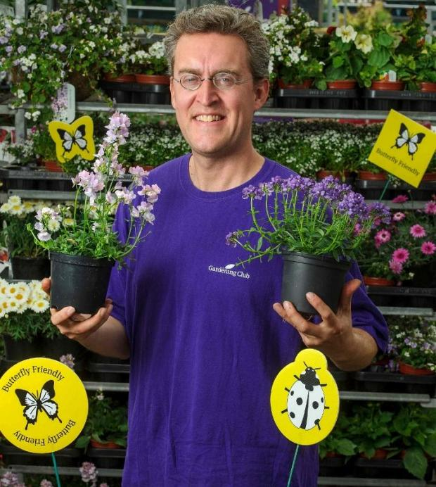 Garden centre celebrates bees and butterflies