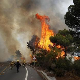 Firefighters work to control a raging forest fire as trees are engulfed in flames next to a road in Ojen, southern Spain (AP)