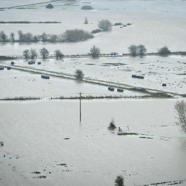 Times Series: Flooded Somerset Levels as heavy rain continues to fall on already drenched fields and swollen rivers in the area