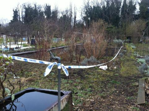Several plots remained sealed off this morning while fire investigators continued their work at the Fuel Land allotments