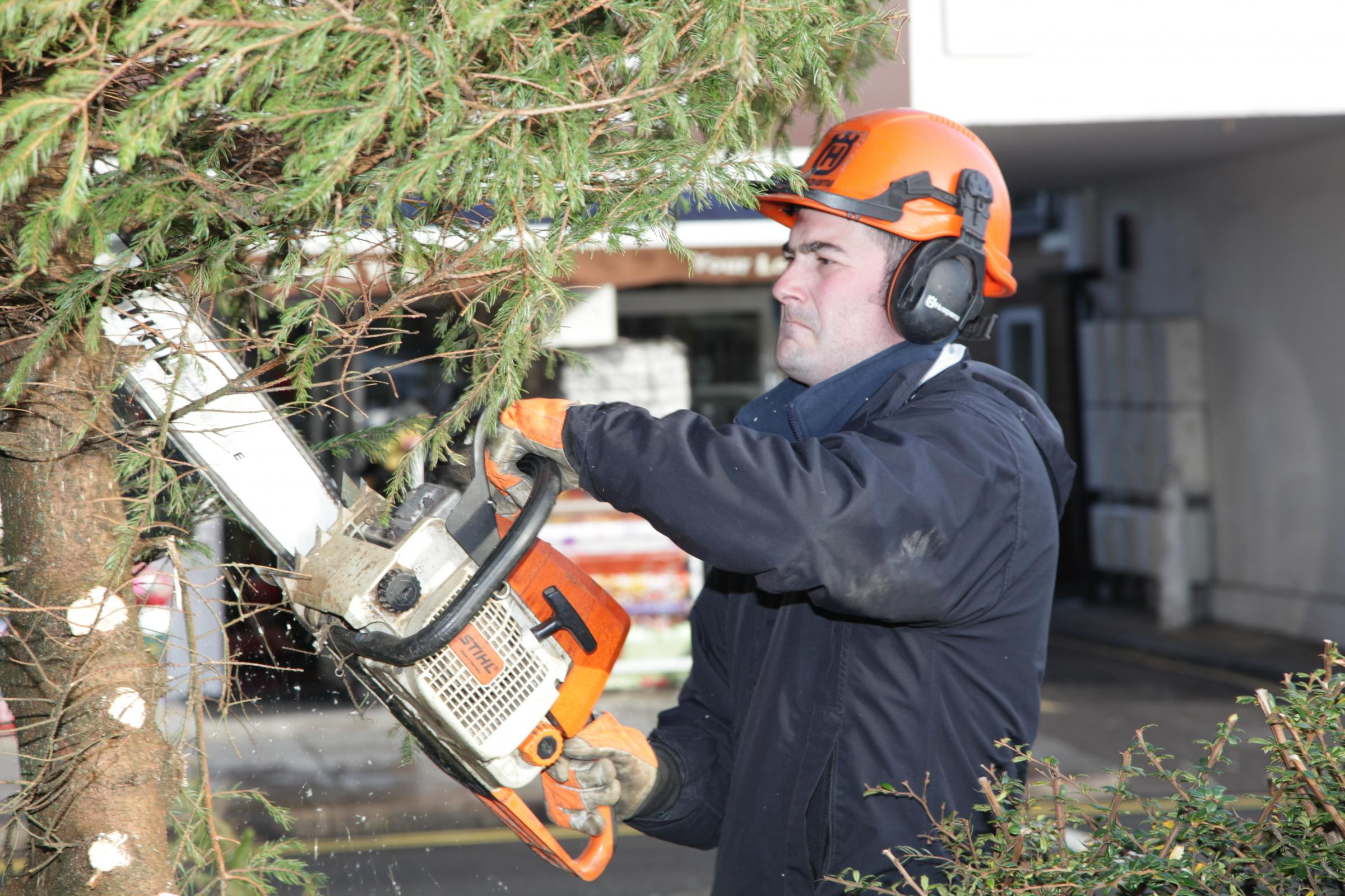 Chainsaws bring an end to town centre Christmas tree