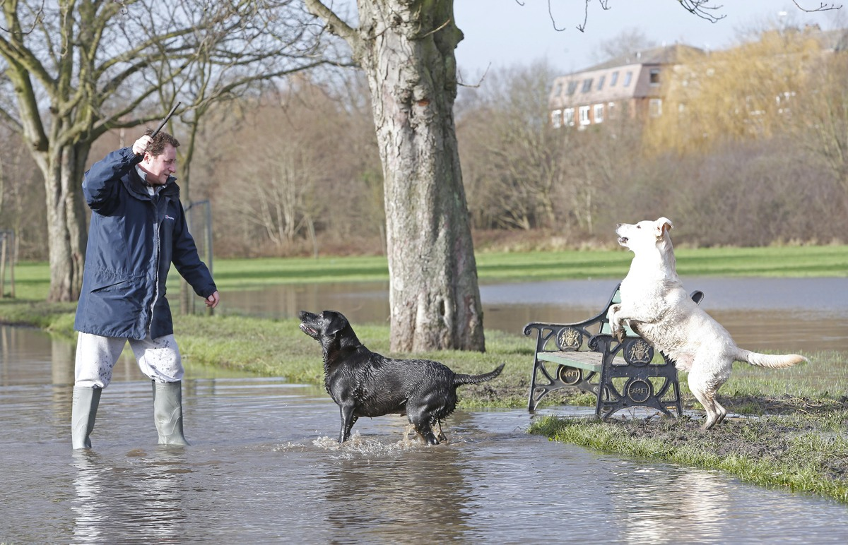 Oak Hill Park, which regularly floods, has been underwater for much of 2014 so far