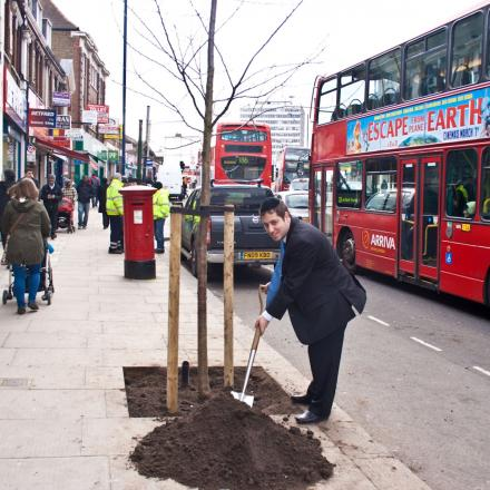 Barnet Borough Council will be planting trees in Edgware, Hendon, New Barnet and Golders Green Road