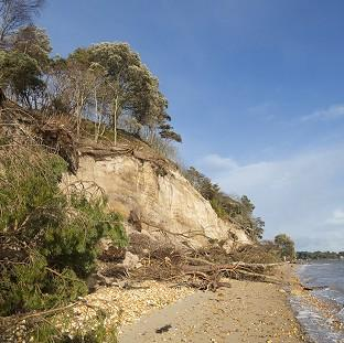 Embargoed to 0001 Friday March 7 Undated handout photo issued by the National Trust of Brownsea Island shore damage as the winter storms that battered the country caused the greatest loss of trees in a generation in some areas, the National Trust has said