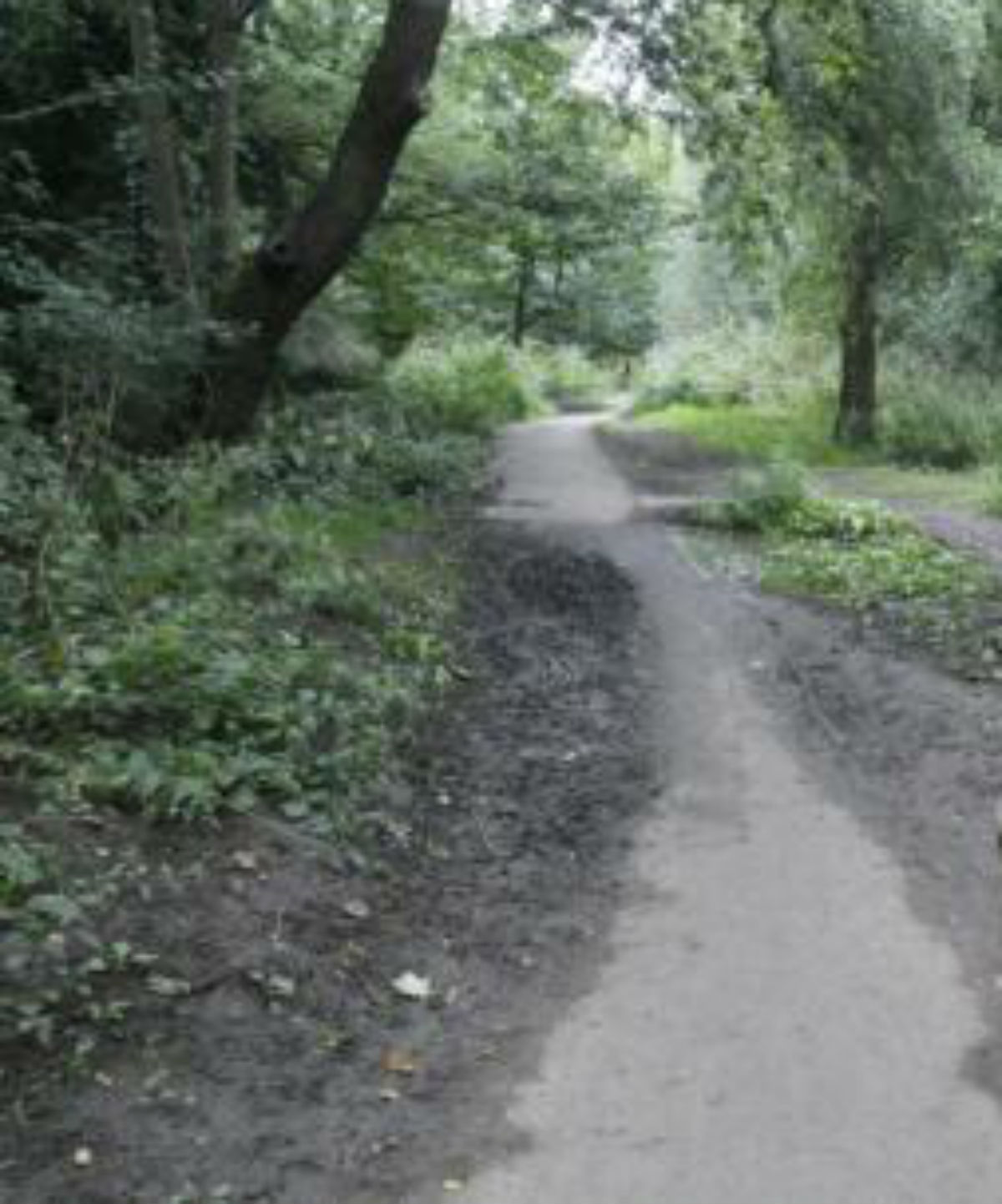 Walkers annoyed at plans to improve cycle access in Greenwalk