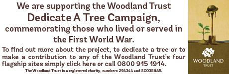 Times Series: Woodland Trust
