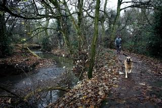 The Dollis Valley Green Walk stretches ten miles from Hendon to Whetstone