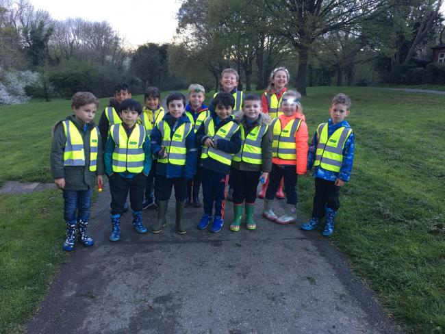 Photo of the Beavers on their walk